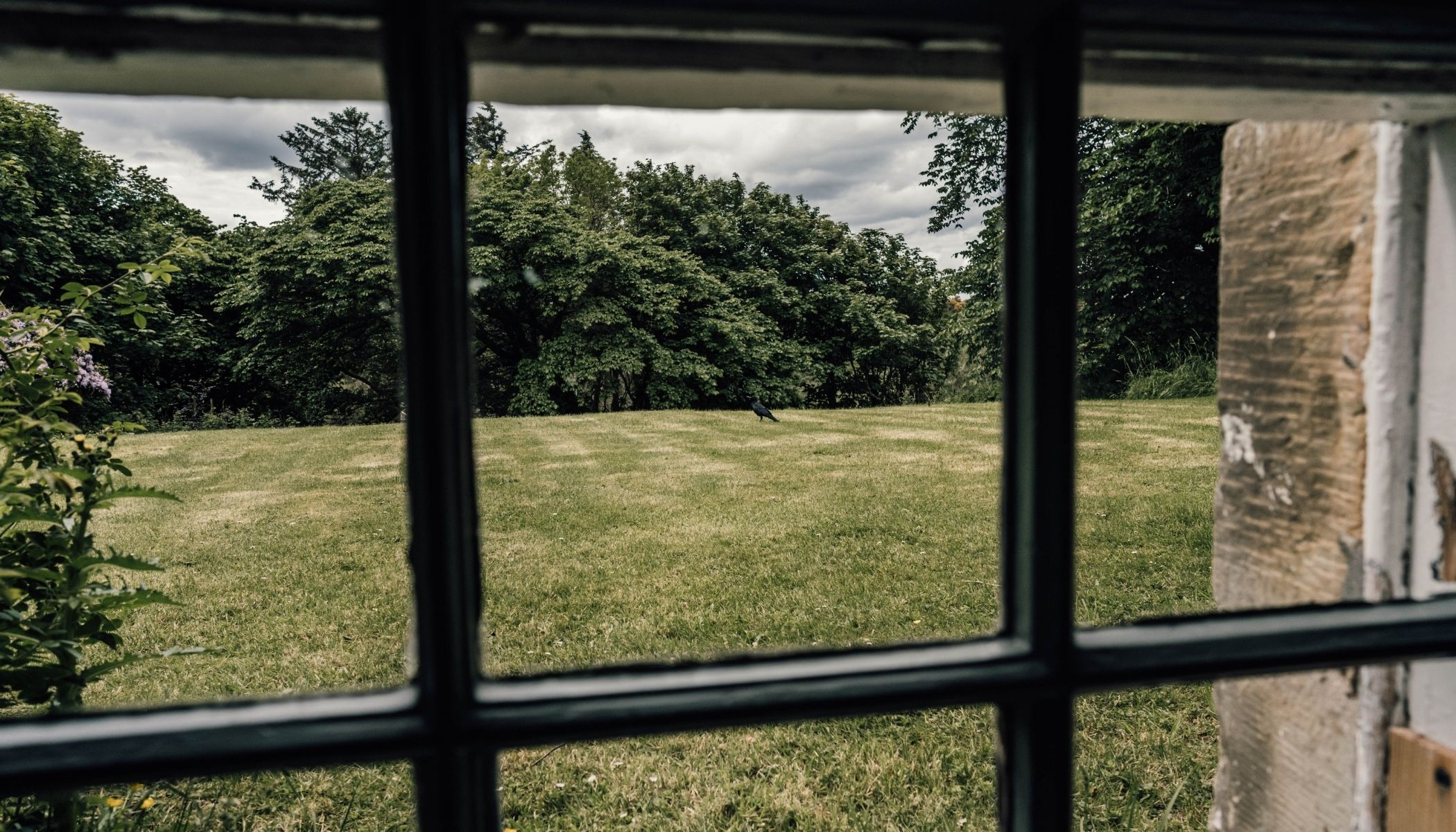 Shurrey - Garden Views