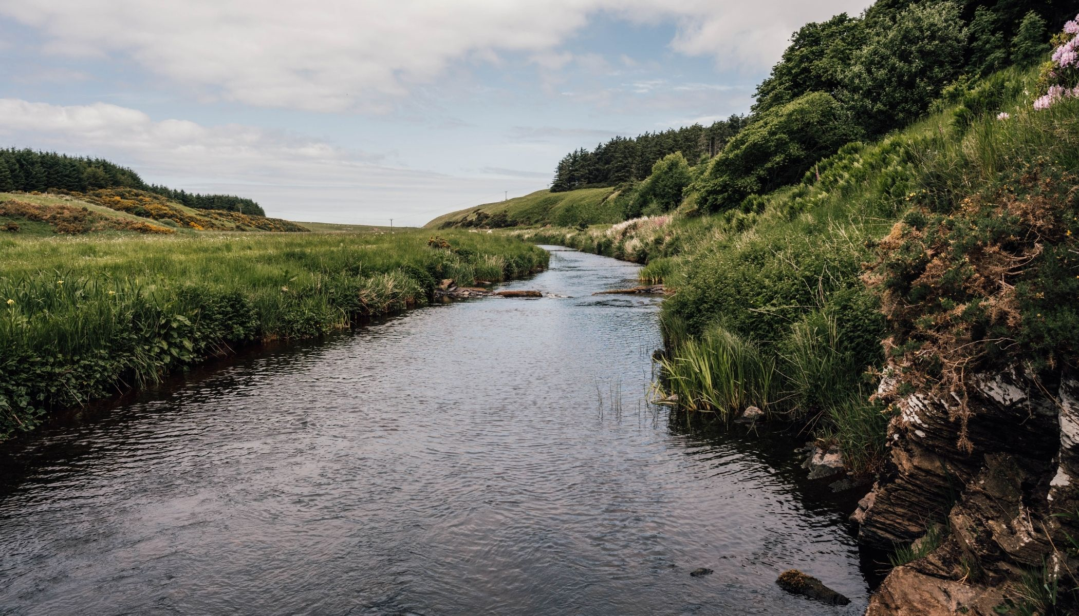 Watch Salmon Leaping at Forss House Hotel