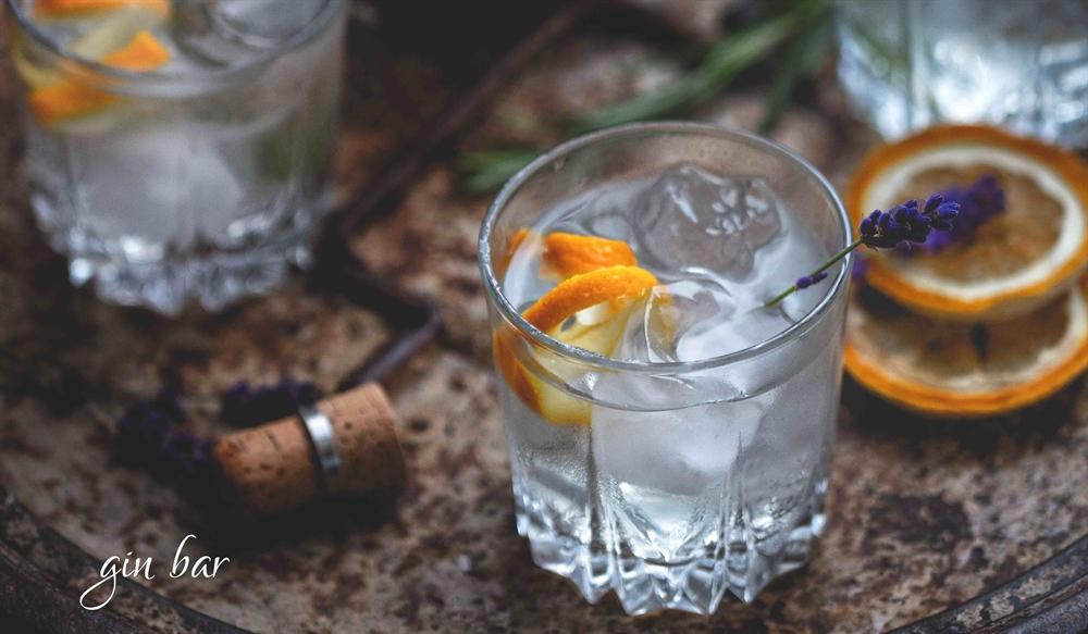 Gin Bar at Widbrook Grange