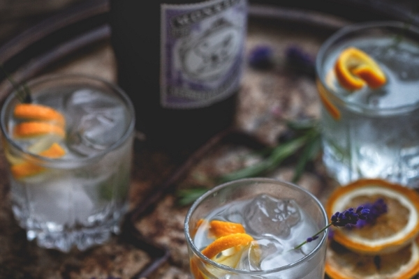 Gin Tasting Experience with Dinner - 3rd July 2020